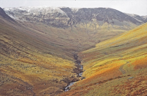 Carrifran 1999. Photo: Borders Forest Trust